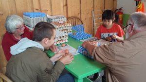 eieren sorteren sikko lidwien hamid ricardo(klein)